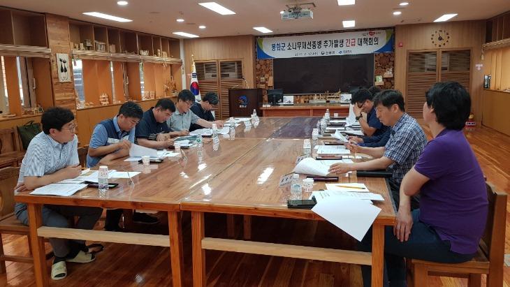 소나무재선충병 추가발생 긴급 대책회의.jpg