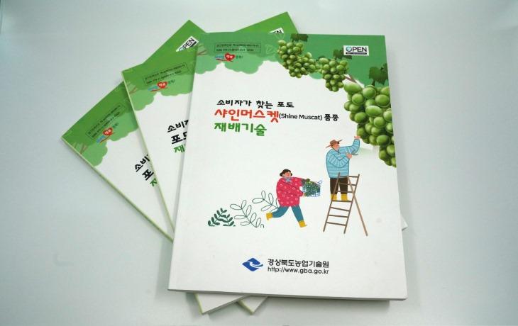 경북도 소비자가_찾는_포도_샤인머스켓_품종_재배기술.JPG